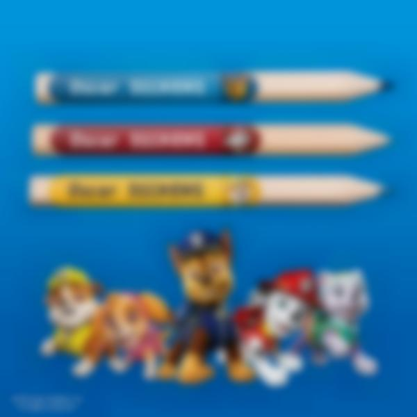 ludilabel paw patrol minis name labels uk