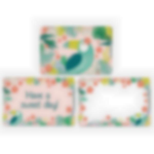 Set of 3 magnetic booster cards for the Ludibox - Lunch Box–Tropical